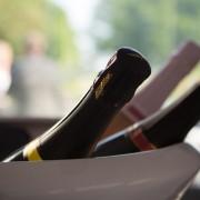 Vineyard Tours at the Tinwood Estate